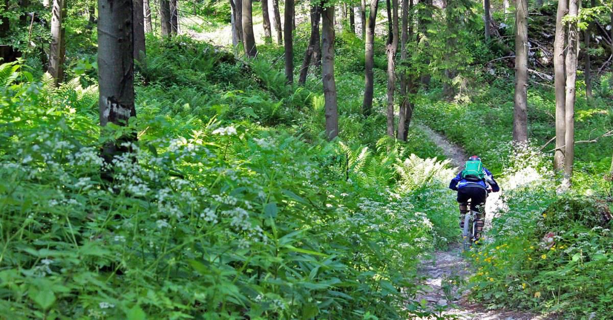 MTB-trail-tracking