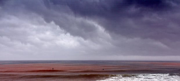red brown sea