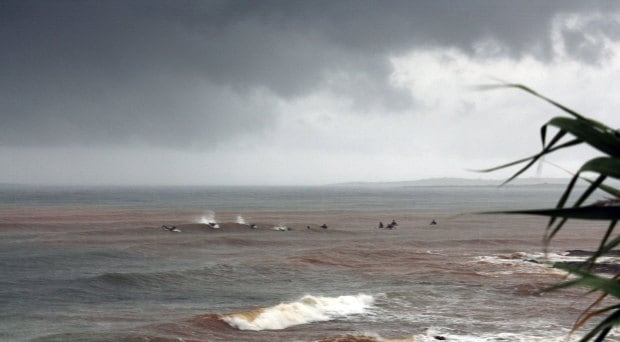 Surfers in dirty water